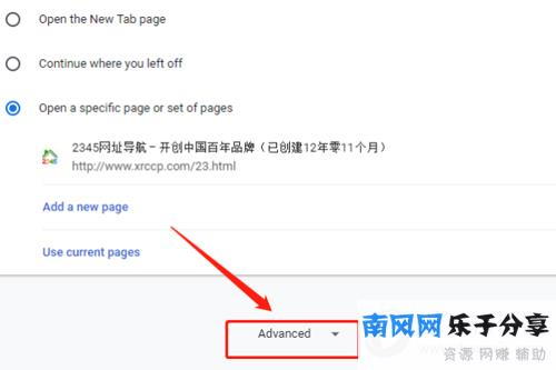 谷歌浏览器高级选项