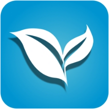 叶子TV v1.7.3 , 纯净无广告挖掘全网影视片源