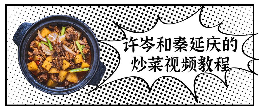 许岑和秦延庆的炒菜视频教程