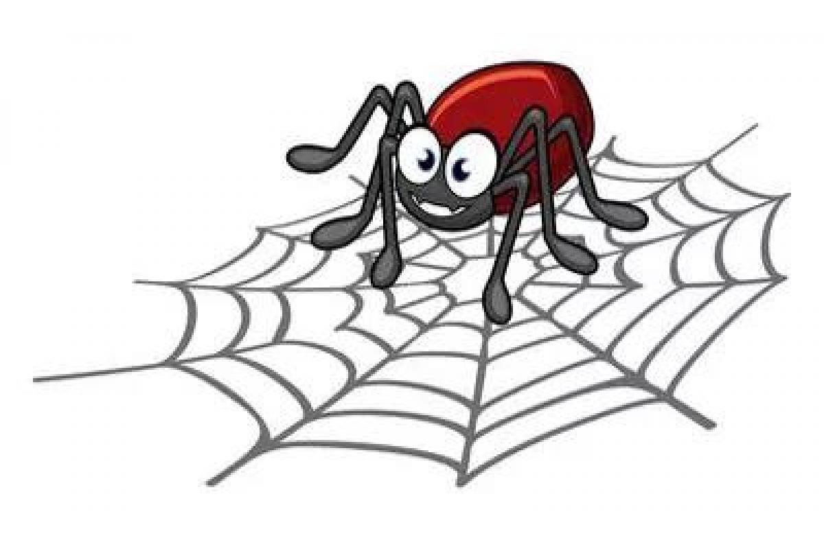 百度蜘蛛如何采集页面?如何吸引蜘蛛来抓取?