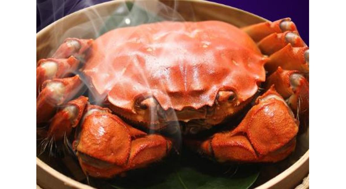 阳澄湖大闸蟹多少钱一斤,一只大闸蟹的价格!