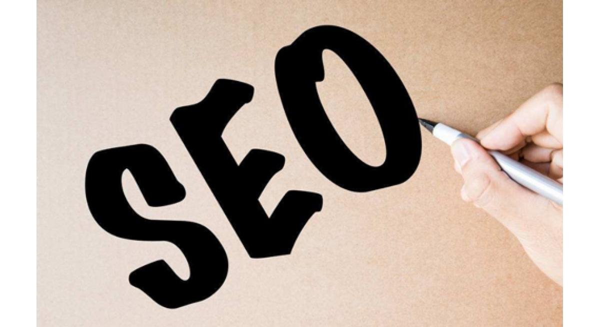 秘鲁巨人蟑螂:SEO如何优化内容?