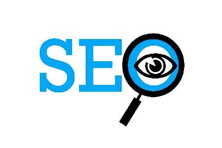 亚马逊莫拉氏鳄:网站搜索引擎优化的内容是什么?