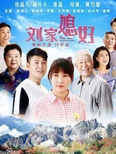 刘家媳妇大结局剧情第40集介绍