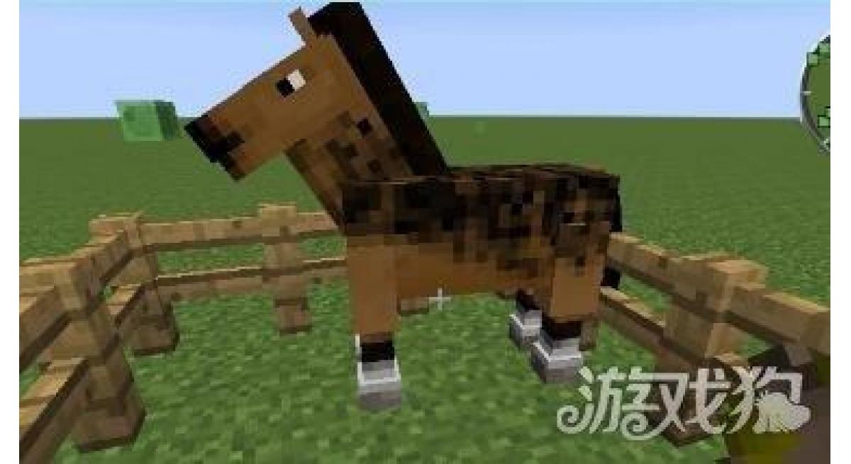 我的世界马怎么驯服 马吃什么(我的世界坐骑有哪些)