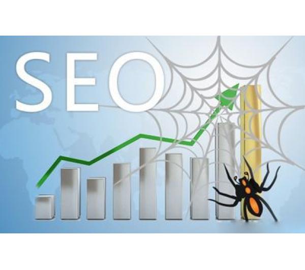 卡通站:如果蜘蛛爬行频率低,优化应该怎么做?